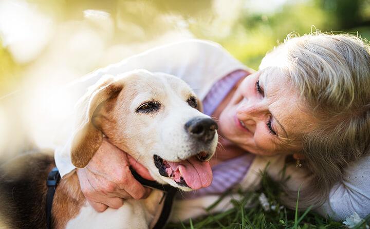 お婆さんと犬