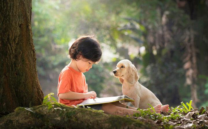 犬に本を読み聞かせる子供