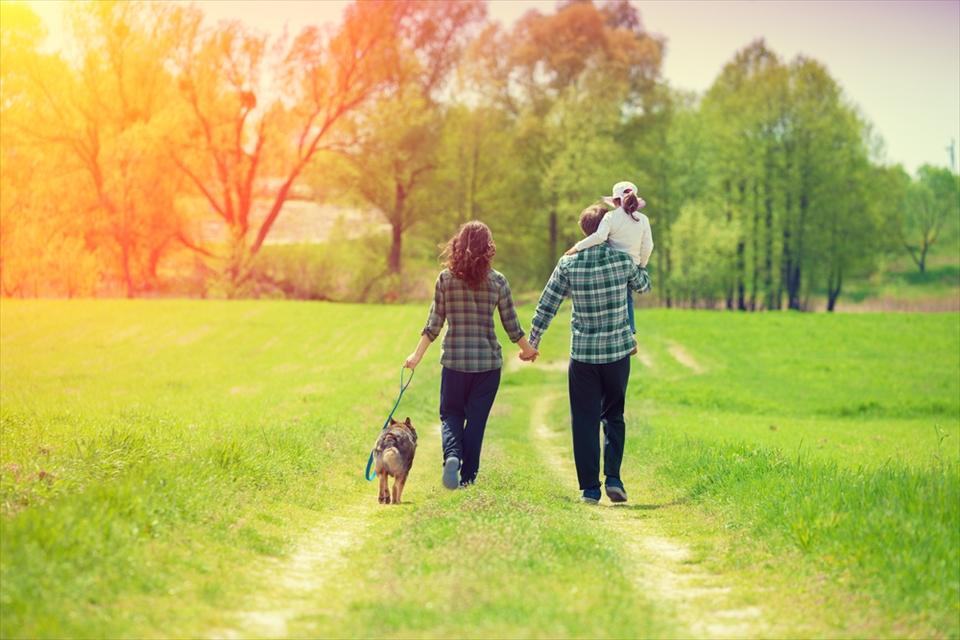 人間の家族と犬